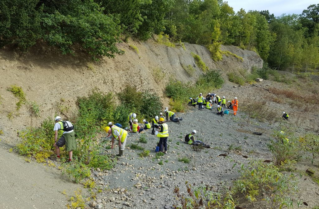 Whitman's Hill - Geologists' Association 'Rockwatch' visit led by Champions