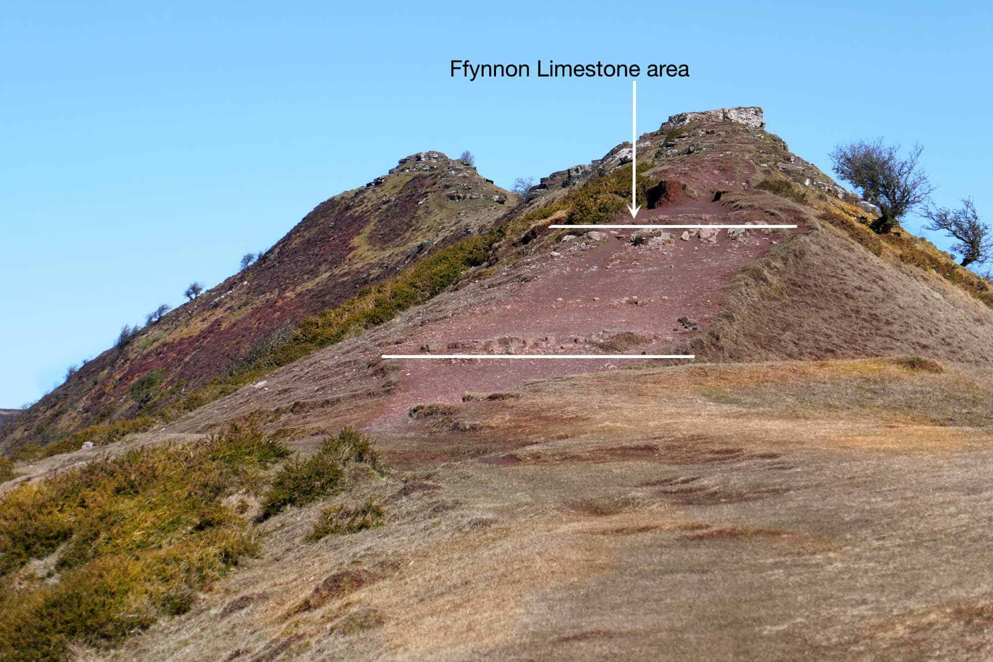 Calcretes - Ffynnon Limestone Cat's Back