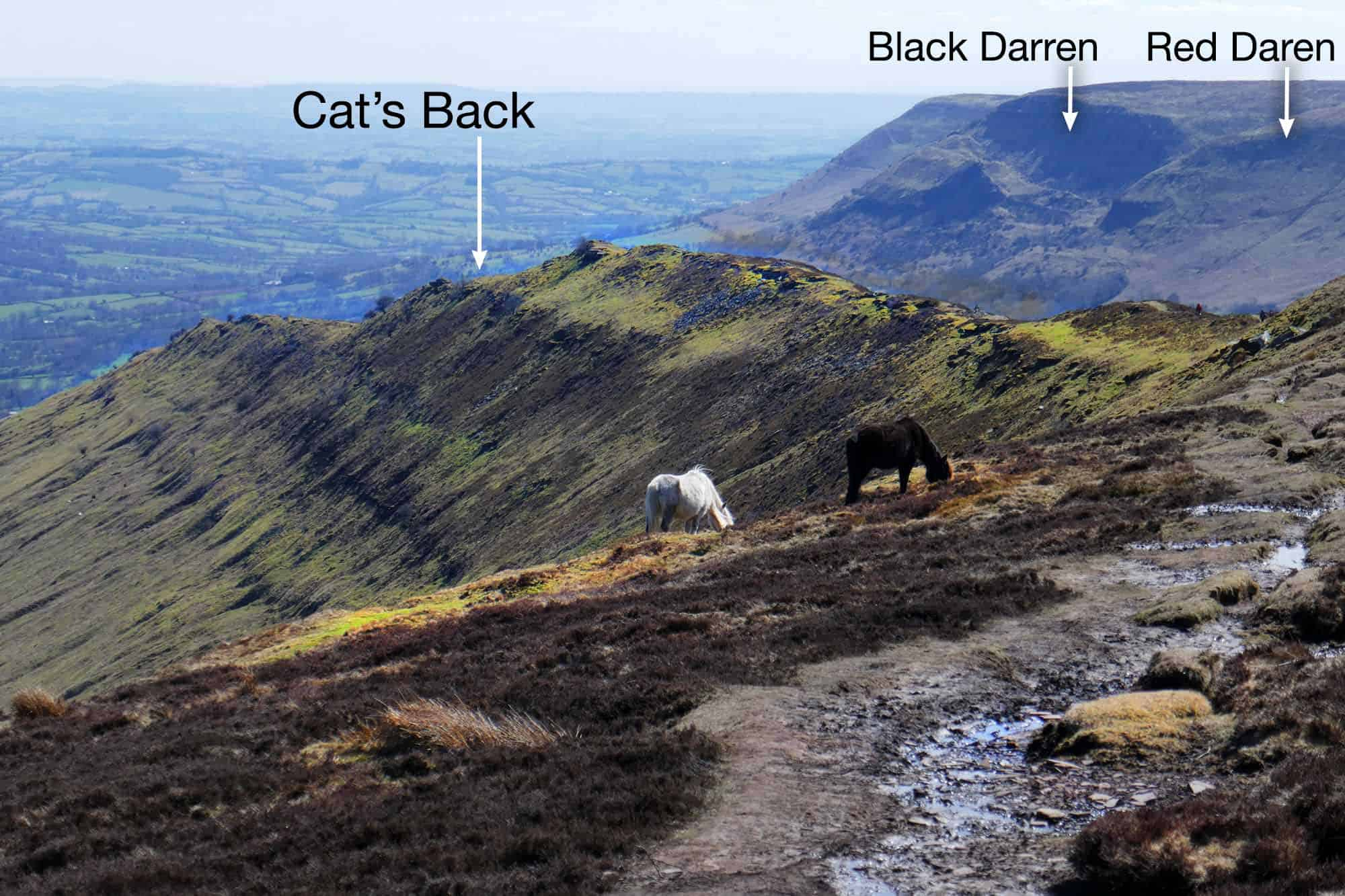 Cat's Back looking south with the Darrens